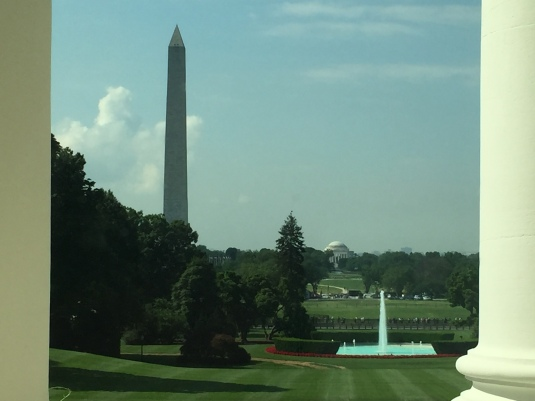 Looking out on the South Lawn